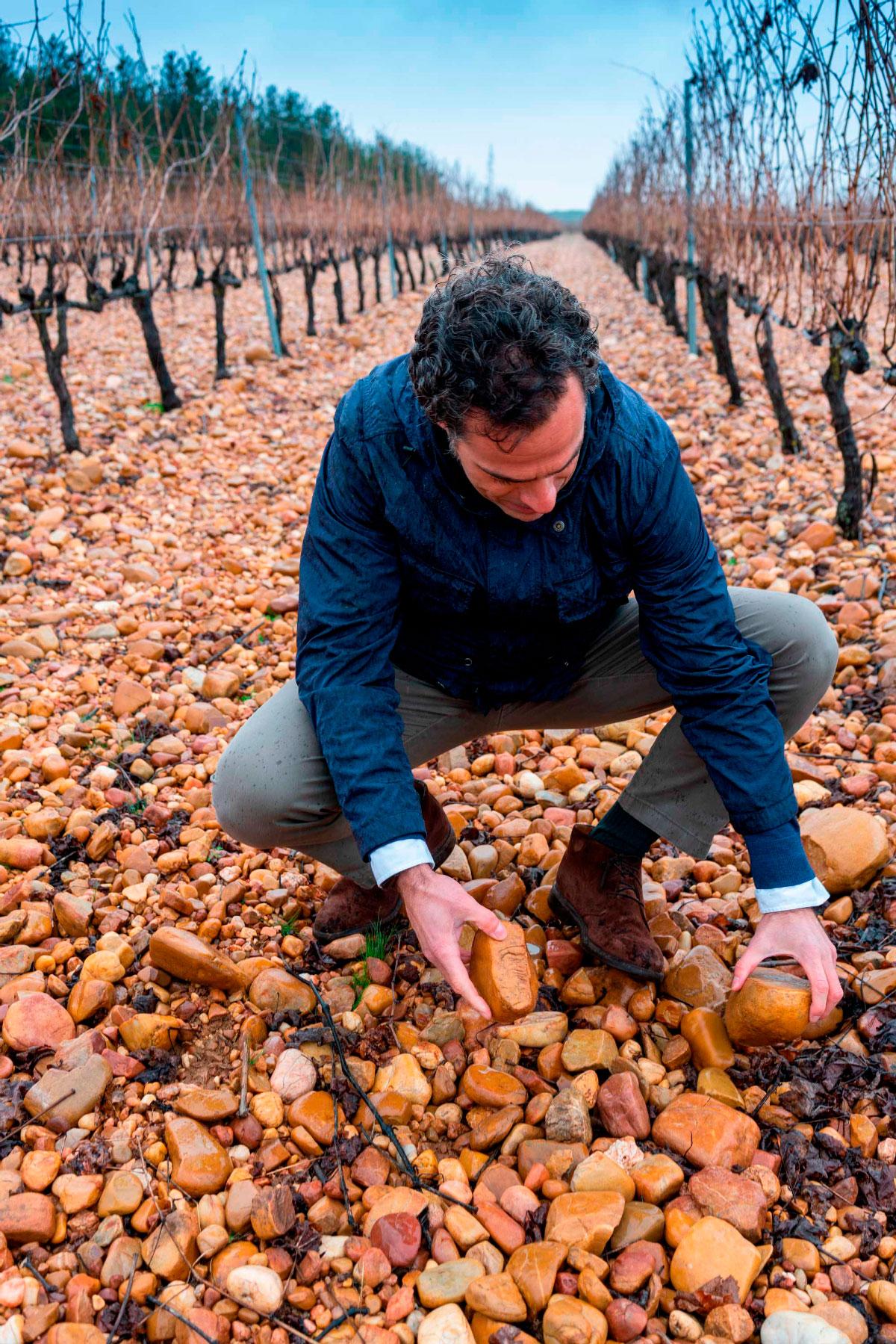 Bodegas de vino Valdrinal