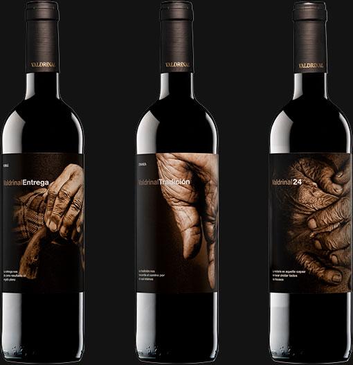 Los mejores vinos calidad precio Valdrinal