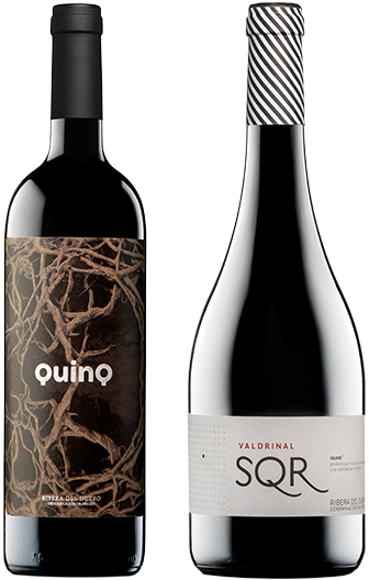 Botellas vino de autor y Quinq Valdrinal